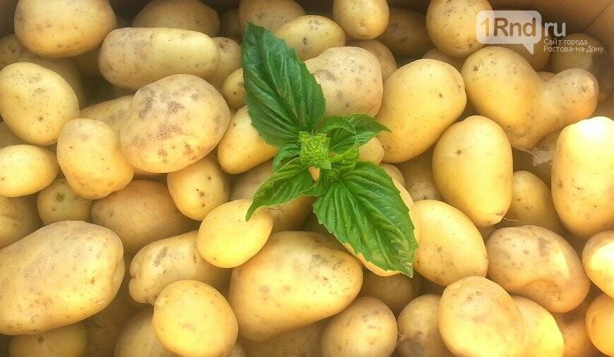 Выбираем картофель для варки, жарки и зимнего хранения, фото-1
