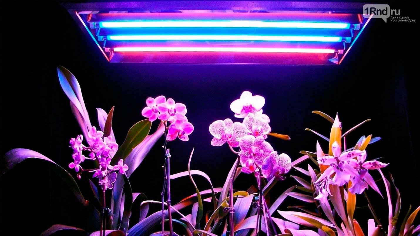 Пример освещения