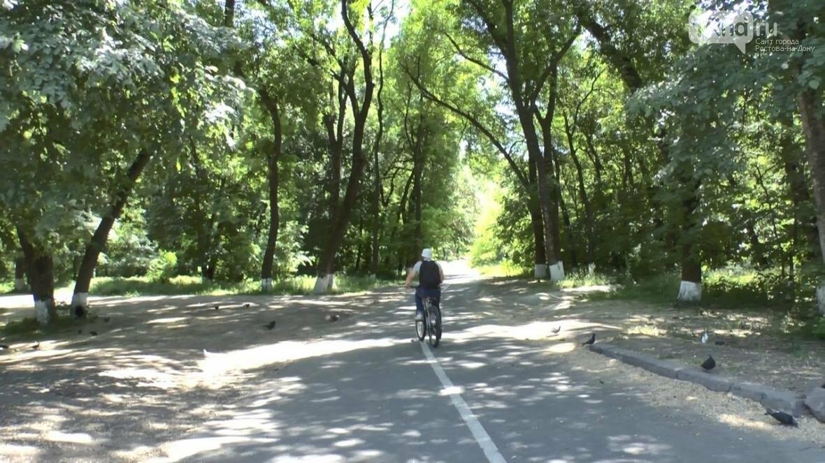 #ХочувРостов: ярославец искал в Ростове самый чистый парк , фото-4