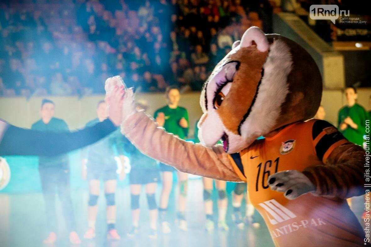 «Ростов-Дон» узнал своих соперников по Лиге чемпионов, фото-1, Фото: Саша Савичева / 1rnd.ru