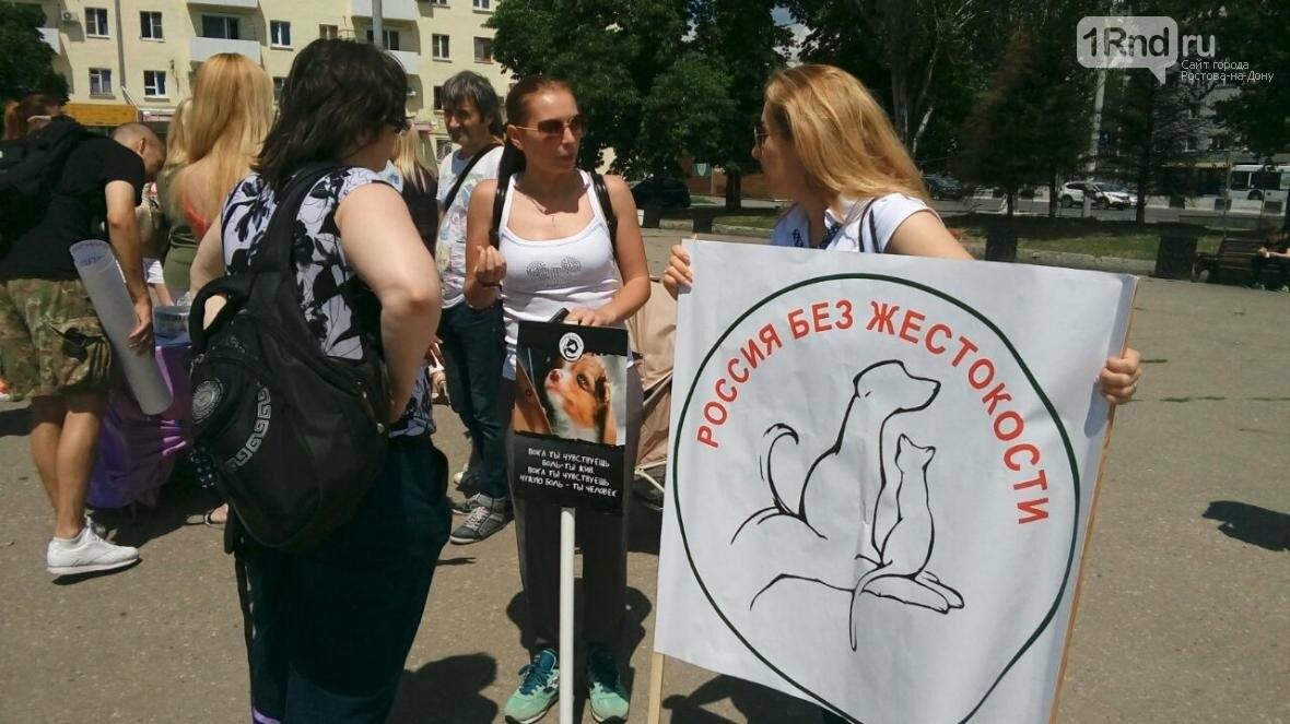 """Ростовские зоозащитники вышли на пикет за принятие Закона """"Об ответственном обращении с животными"""", фото-5"""