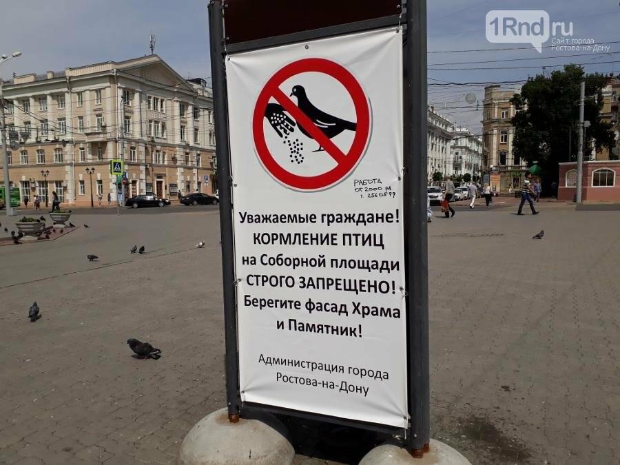 Соборная площадь в Ростове: бомжей прогнали, парковочные столбики поставили, фото-2
