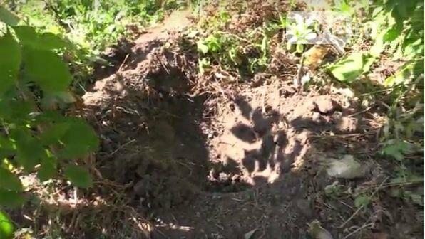 Женщина, избавившаяся от новорожденного ребенка в Морозовске, призналась в убийстве, фото-2
