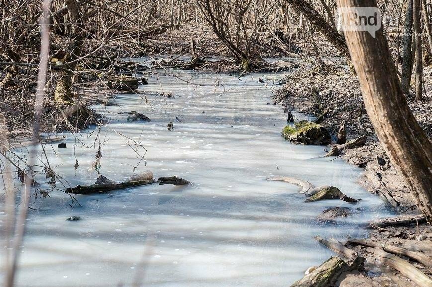 Минприроды: в Ростове обнаружено более 60 мест загрязнения реки Темерник, фото-6, Анатолий Карбинов