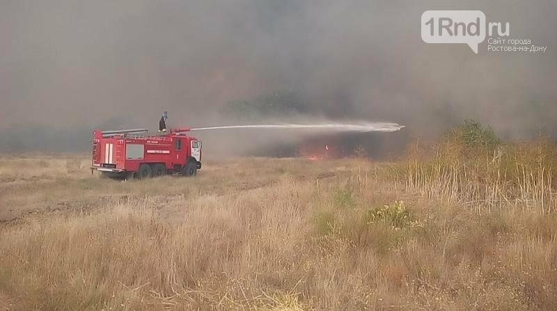 Площадь лесного пожара в Усть-Донецком районе увеличилась почти в пять раз, фото-3