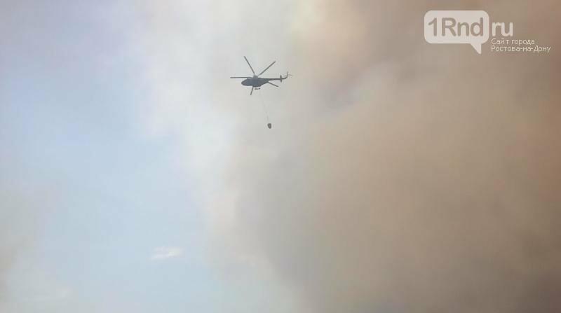 Площадь лесного пожара в Усть-Донецком районе увеличилась почти в пять раз, фото-1