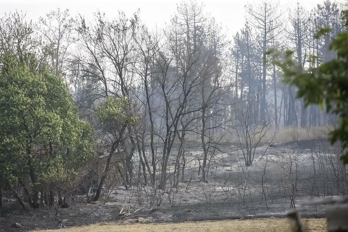 Губернатор потребовал узнать причину пожара в Усть-Донецком районе и наказать виновных, фото-2