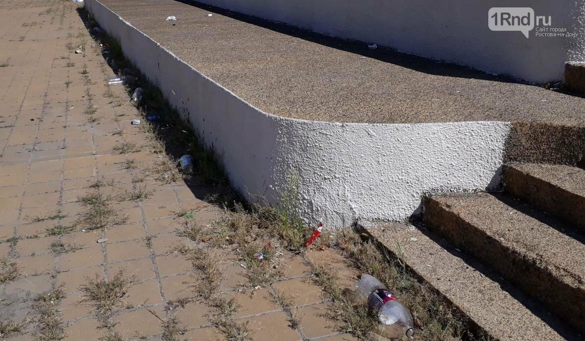 «Я тупею и деградирую» — в Ростове исписали памятник воинам-освободителям, фото-3