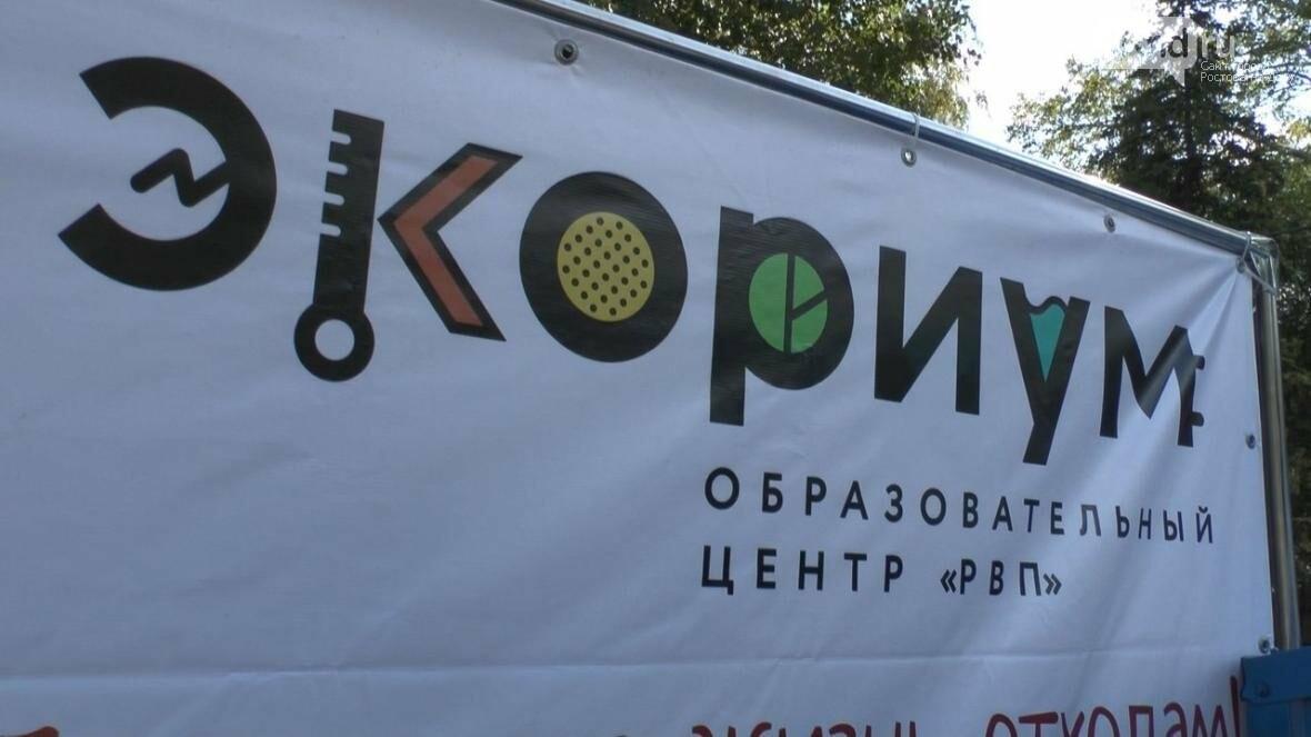 В Ростове прошел городской молодежный ПИКник, посвященный году экологии, фото-13