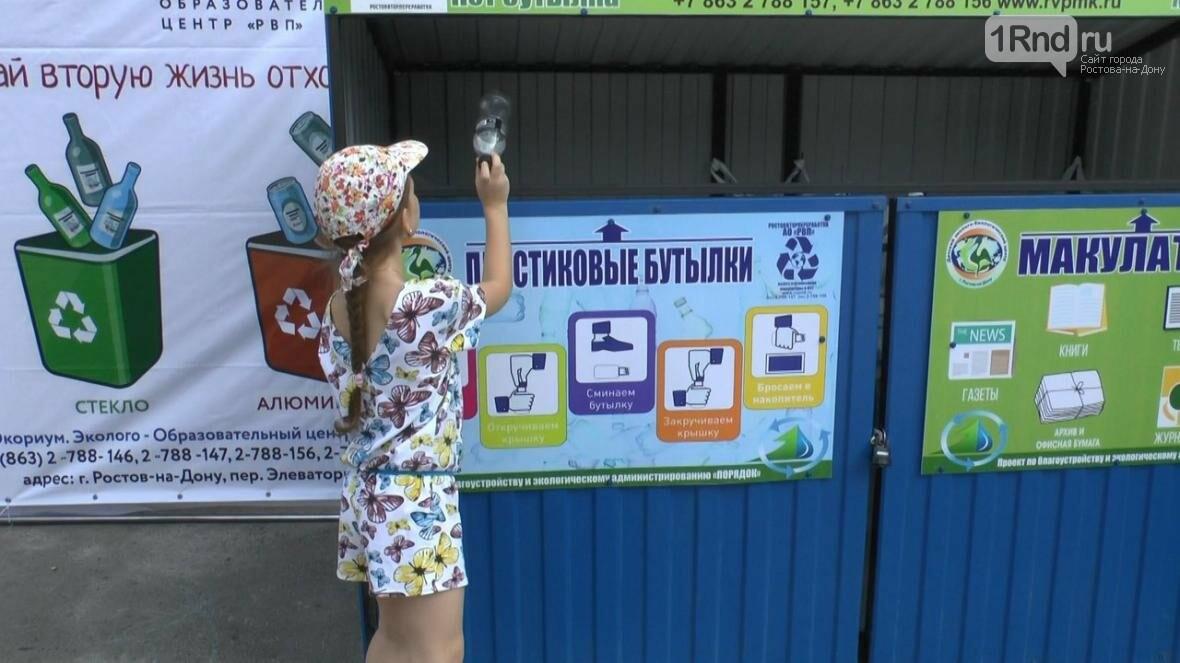 В Ростове прошел городской молодежный ПИКник, посвященный году экологии, фото-11