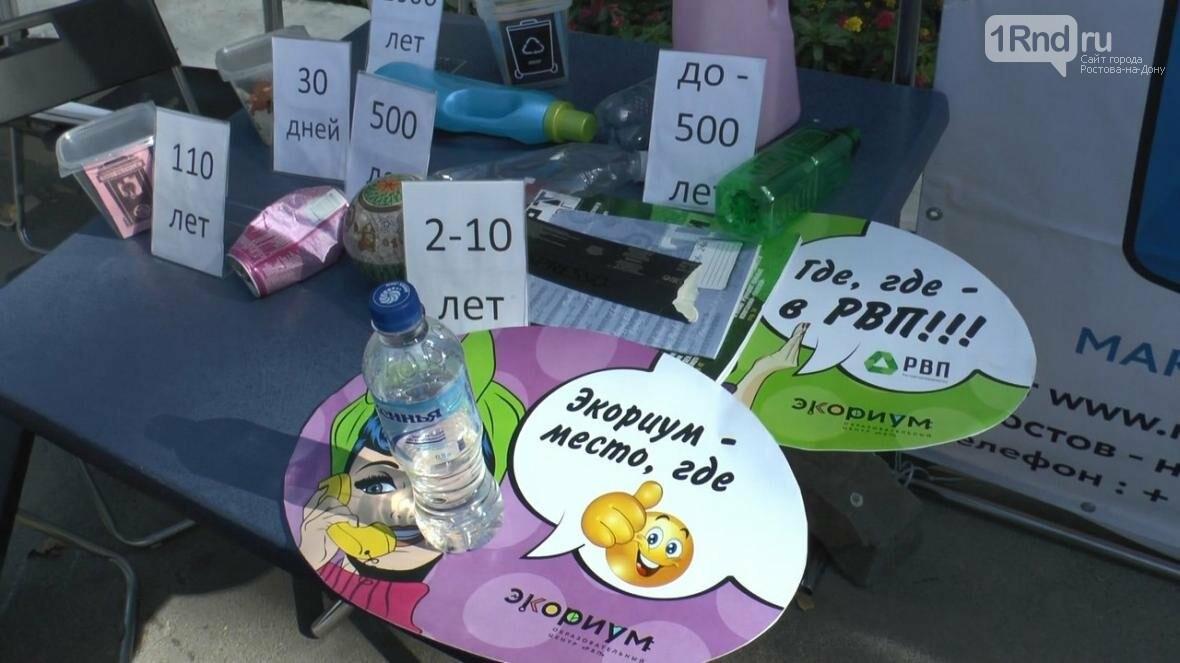 В Ростове прошел городской молодежный ПИКник, посвященный году экологии, фото-9