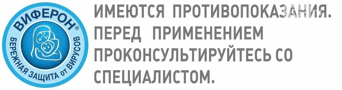 1rnd.ru и «Виферон» провели большое родительское собрание в детском саду №117, фото-12