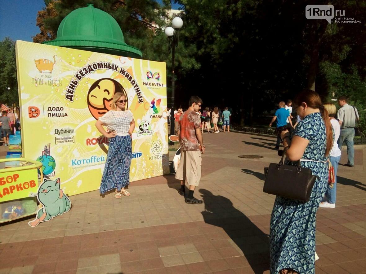 День бездомных животных отметили в Ростове-на-Дону, фото-9, Фото: Анна Дунаева