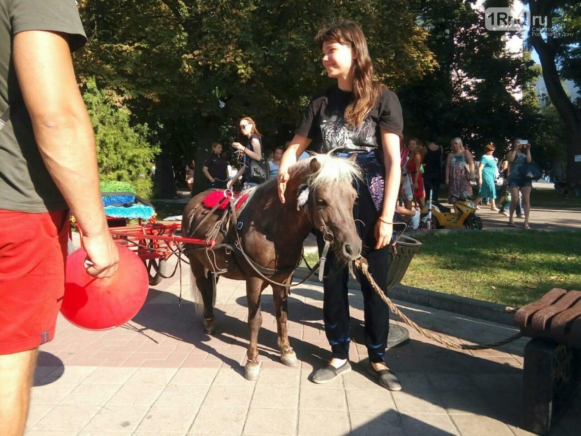 День бездомных животных отметили в Ростове-на-Дону, фото-3, Фото: Анна Дунаева