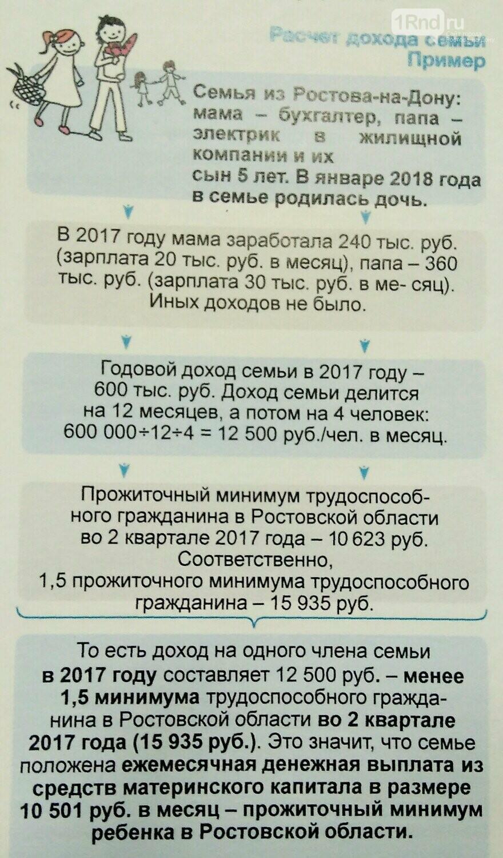 В Ростове рассказали о дополнениях в программе материнского капитала, фото-1