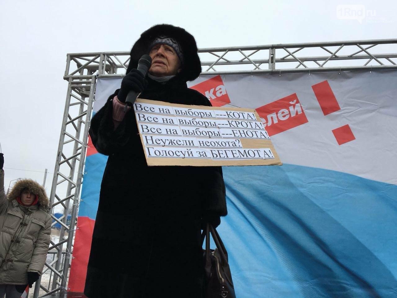 """В Ростове сторонники Навального проводят """"забастовку избирателей"""", фото-5"""