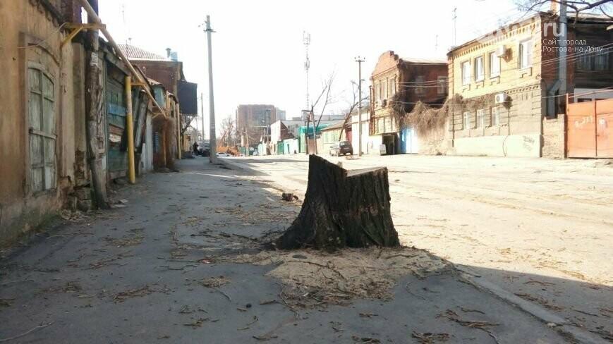 Коммуникации больше не мешают: на ул.Станиславского в Ростове обещают высадить 400 деревьев, фото-1