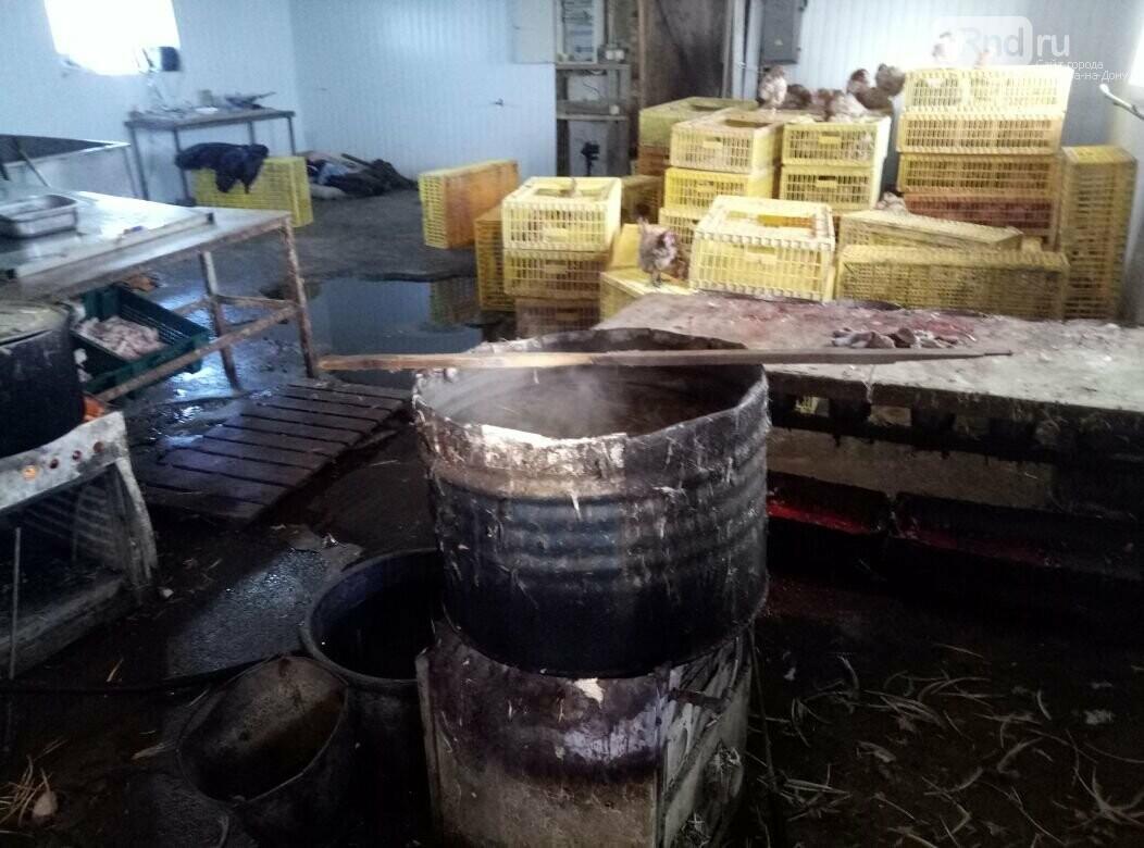 Подпольный цех по производству мяса птицы обнаружили в Ростовской области, фото-2
