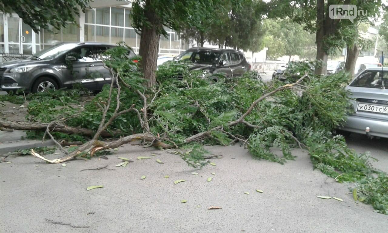 Ураганный ветер в Ростове: летающие ветки и разбитые машины, фото-4, Фото: Елена Доровских / 1rnd.ru