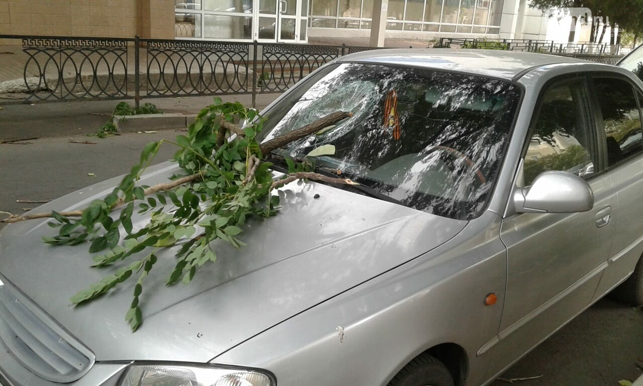 Ураганный ветер в Ростове: летающие ветки и разбитые машины, фото-1, Фото: Елена Доровских / 1rnd.ru