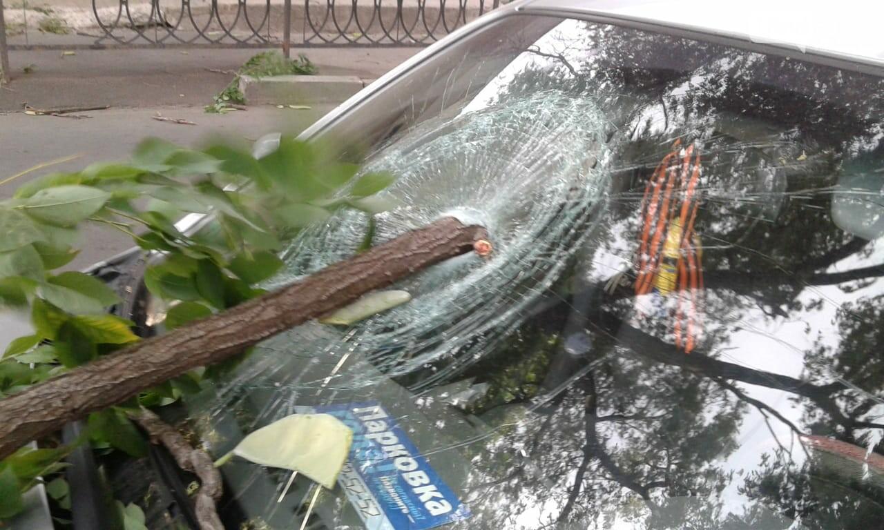 Ураганный ветер в Ростове: летающие ветки и разбитые машины, фото-2, Фото: Елена Доровских / 1rnd.ru