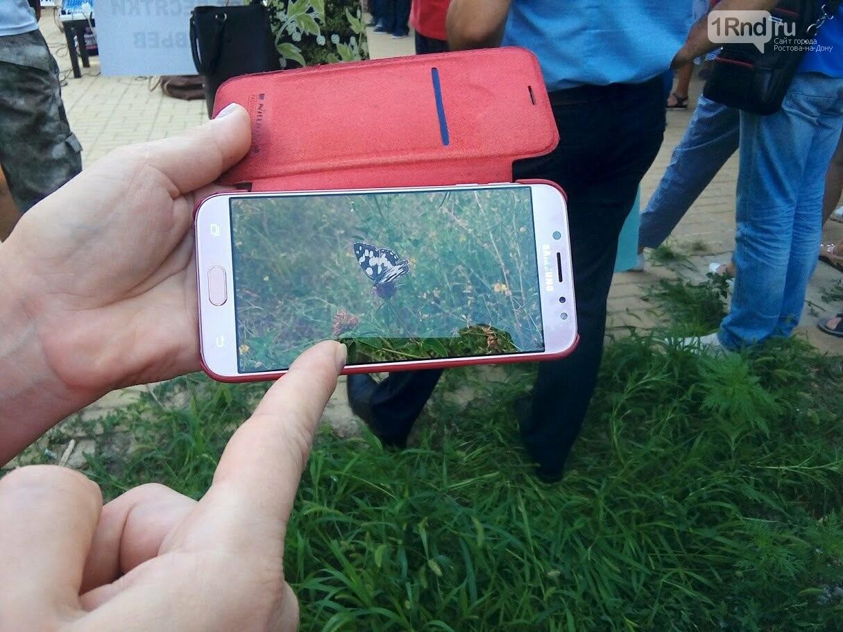 Закладка камня с элементами похорон: акция против вырубки Александровской рощи прошла в Ростове, фото-10