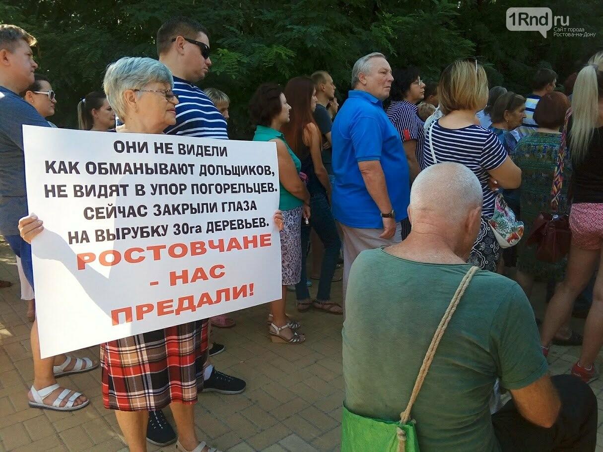 Закладка камня с элементами похорон: акция против вырубки Александровской рощи прошла в Ростове, фото-13