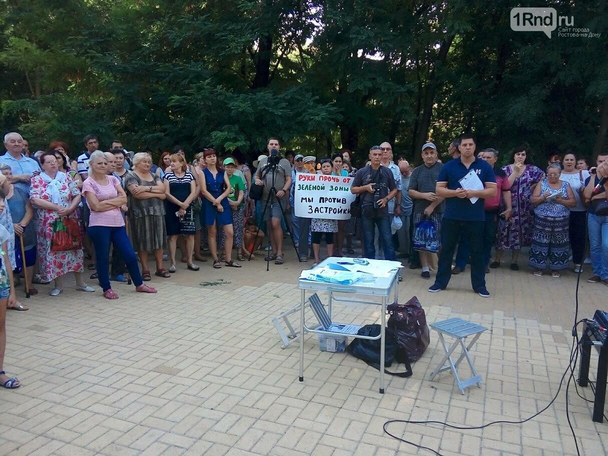 Закладка камня с элементами похорон: акция против вырубки Александровской рощи прошла в Ростове, фото-14