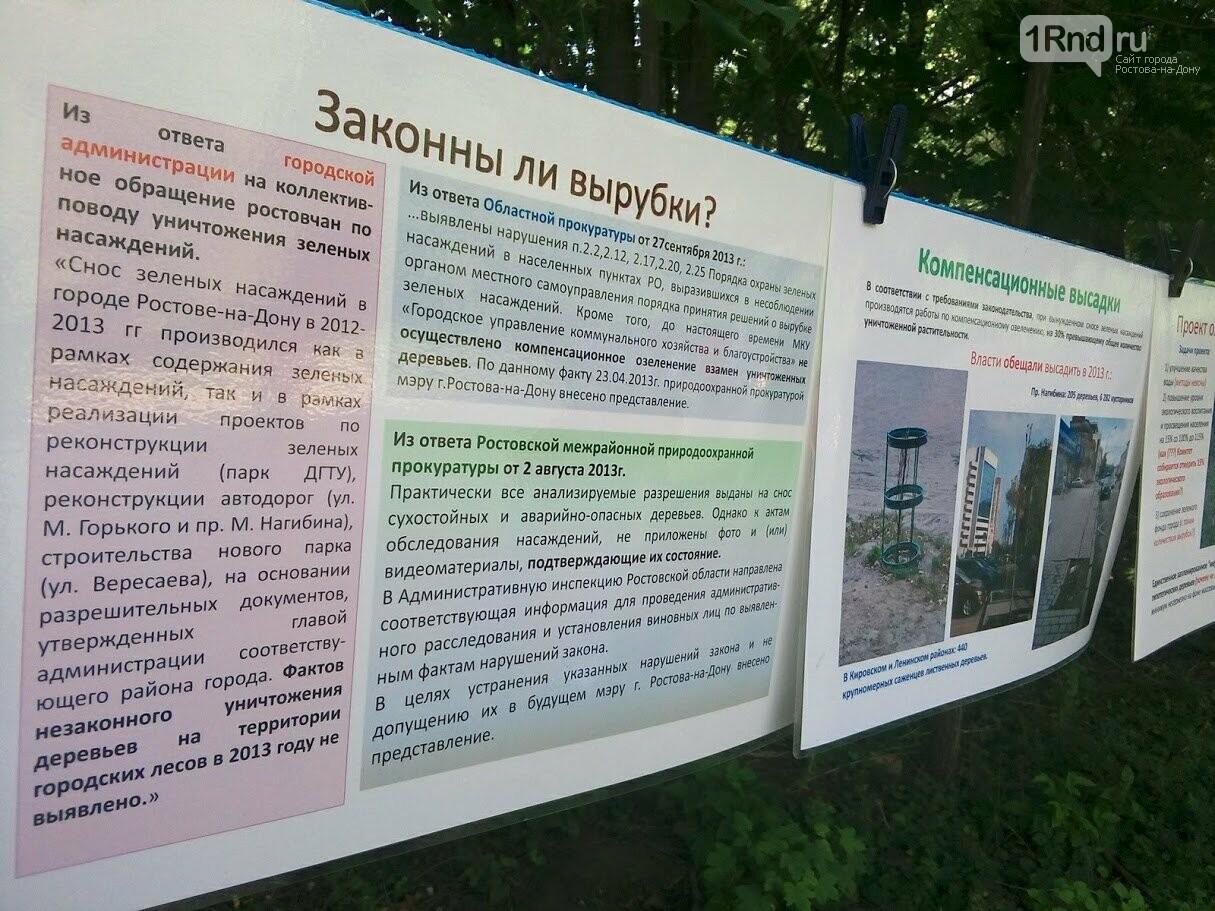 Закладка камня с элементами похорон: акция против вырубки Александровской рощи прошла в Ростове, фото-5