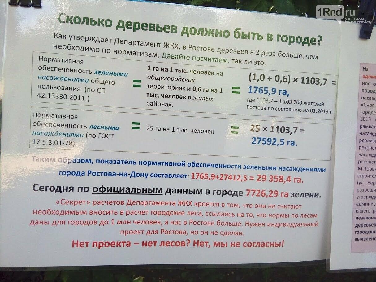 Закладка камня с элементами похорон: акция против вырубки Александровской рощи прошла в Ростове, фото-4