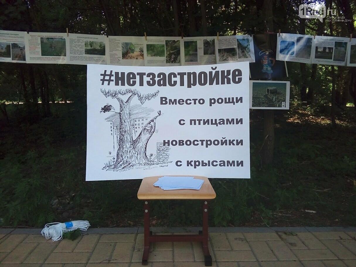 Закладка камня с элементами похорон: акция против вырубки Александровской рощи прошла в Ростове, фото-6