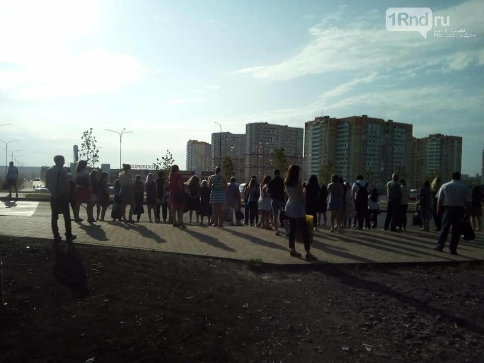 Кушнарева попросили добавить больших автобусов на маршруты в Суворовский, фото-1
