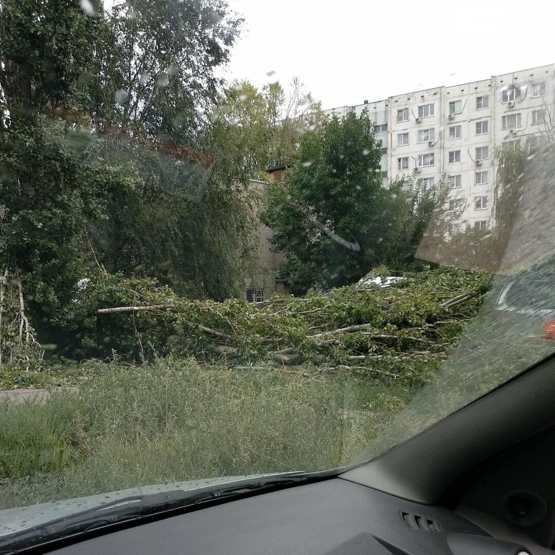 В Ростове дерево упало на ларек и три машины, фото-1