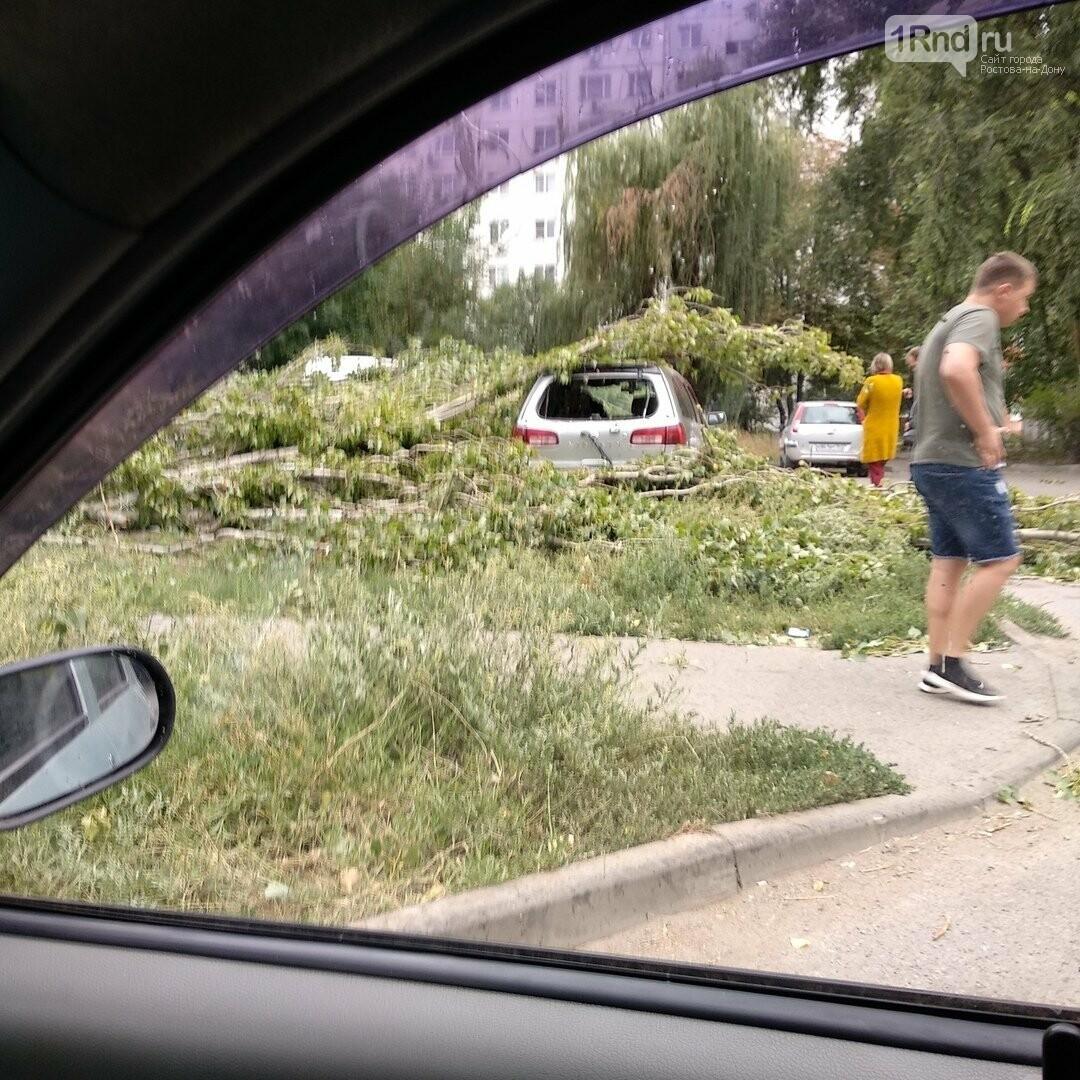 В Ростове дерево упало на ларек и три машины, фото-2