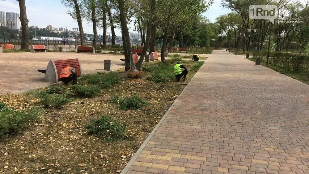 Левобережный парк в Ростове убрали ко Дню города, фото-1