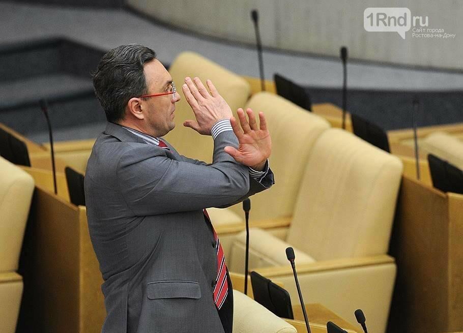 Ростовский суд признал экс-депутата Госдумы РФ виновным в избиении полицейских, фото-4