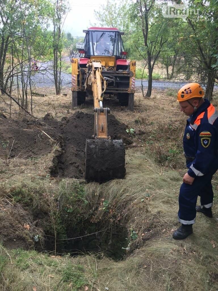 В Ростовской области спасатели вытащили из колодца корову, фото-2