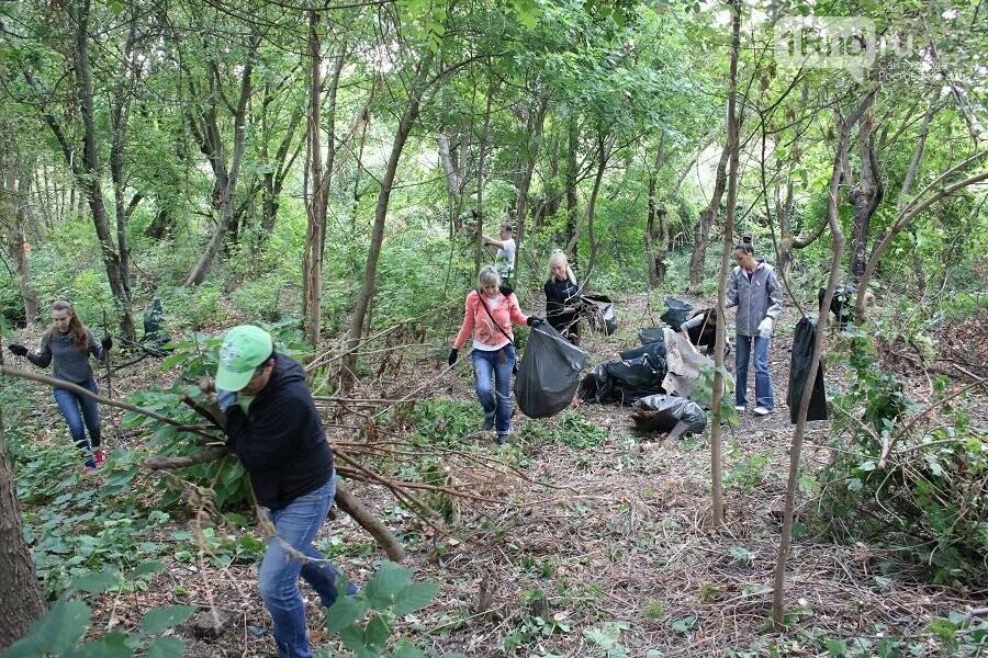 С берегов реки Темерник в Ростове вывезли шесть грузовиков мусора, фото-1, Фото: пресс-служба администрации Ростова