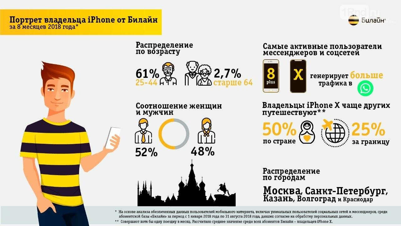 Телефонная инфографика: портрет владельца iPhone от Билайн, фото-1