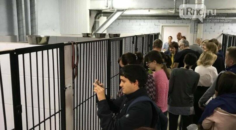 """Центр бесплатной стерилизации """"Собачий патруль"""" официально открыли в Ростове, фото-3"""