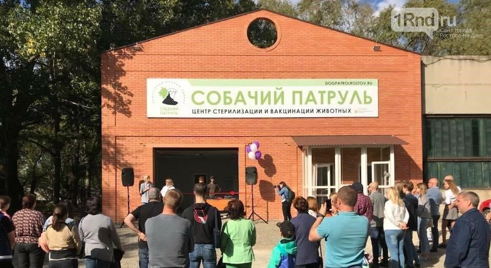 """Центр бесплатной стерилизации """"Собачий патруль"""" официально открыли в Ростове, фото-1"""