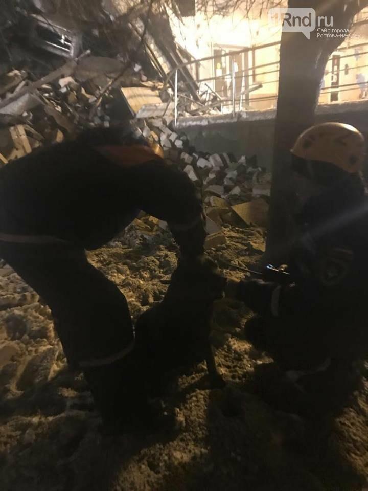 Кинологи обследовали рухнувшее здание в Новочеркасске, фото-1