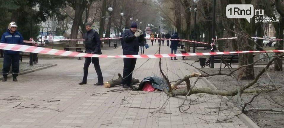 Ветер в Ростове-на-Дону ломал ограждения и деревья, фото-2