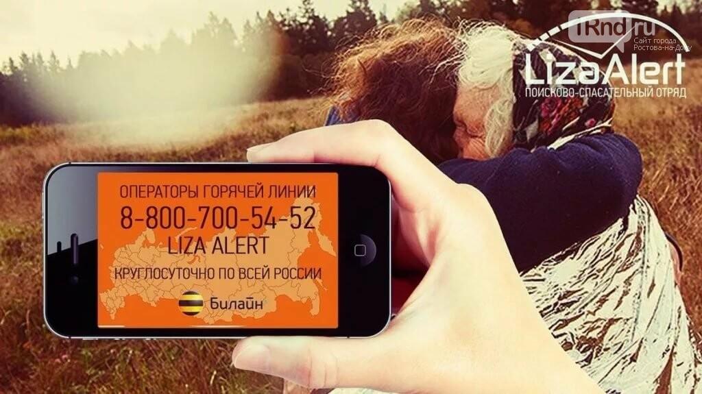 ПСО «Лиза Алерт» и Билайн призвали операторов связи объединить усилия в поиске пропавших людей, фото-1