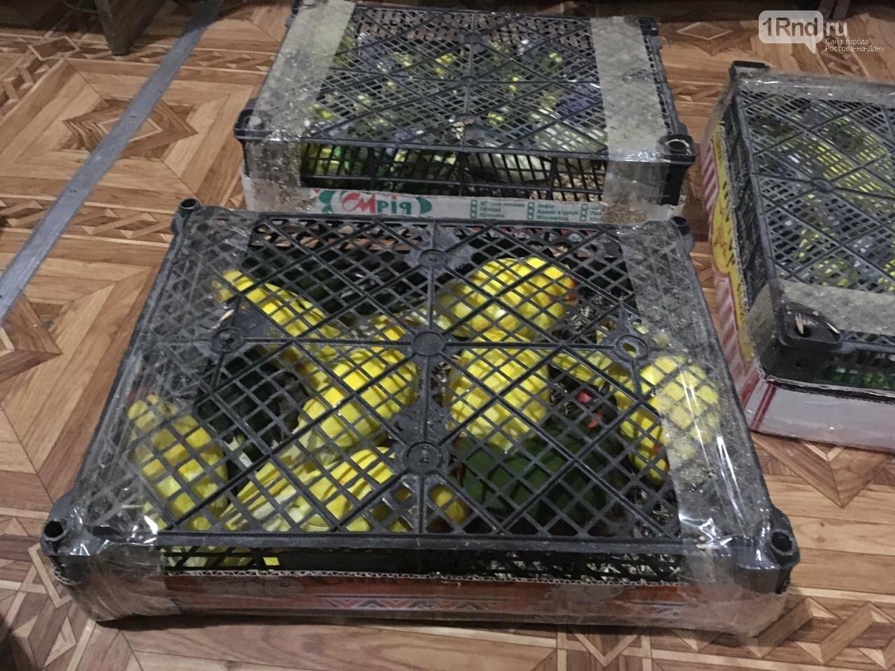 Донские пограничники задержали контрабандистов, перебросивших через границу  сумки с попугаями, фото-1