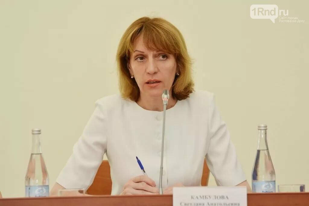 В мэрии Ростова появился новый первый заместитель сити-менеджера и зам по экономике, фото-2