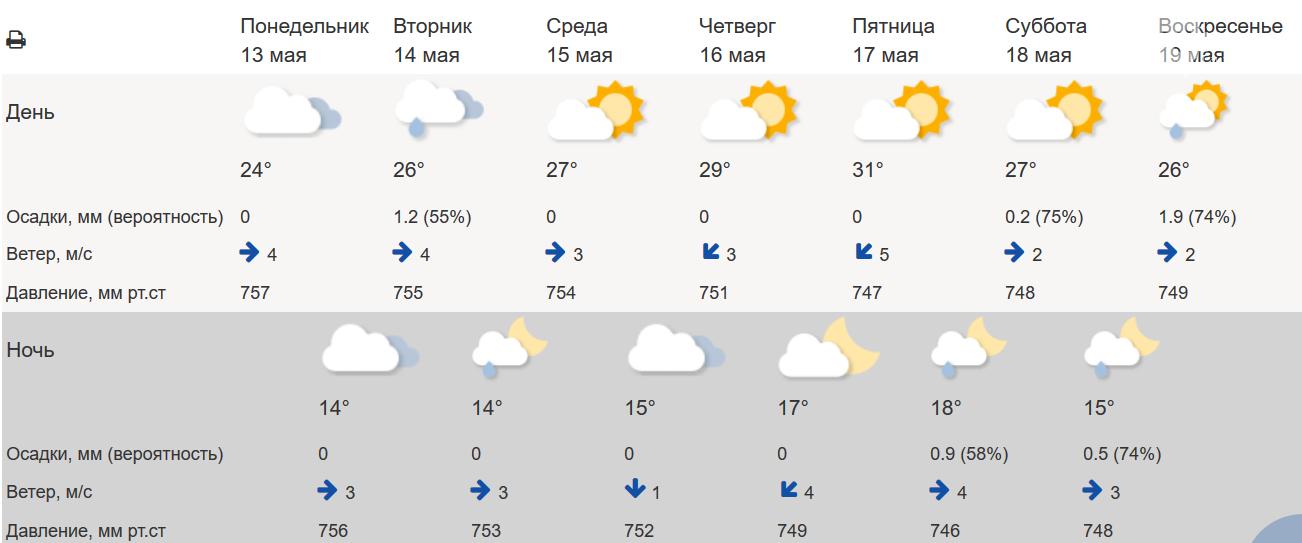 Жара до +31 градуса ожидается в Ростове на этой неделе, фото-1