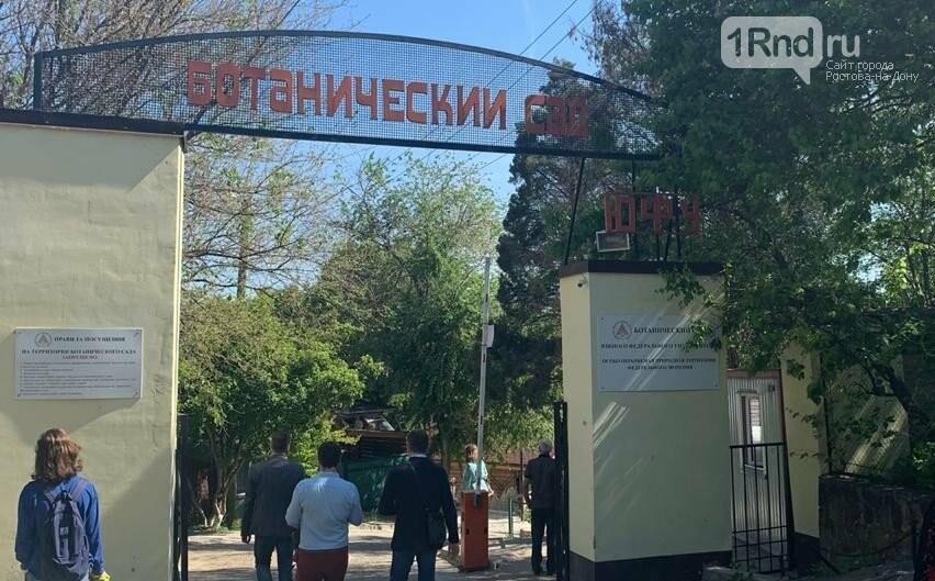 В ростовском Ботаническом саду прошел фестиваль ландшафтного дизайна, фото-1