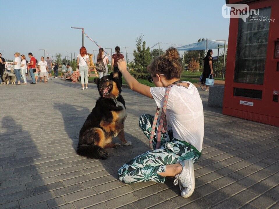 Афиша последних июльских выходных в Ростове: что посмотреть и куда сходить, фото-4
