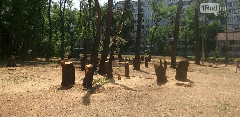 Неделя откровений: главные события семи дней в Ростове и области, фото-1